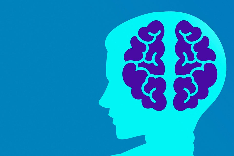 How To Build Growth Mindset And Succeed In Your Professional Life