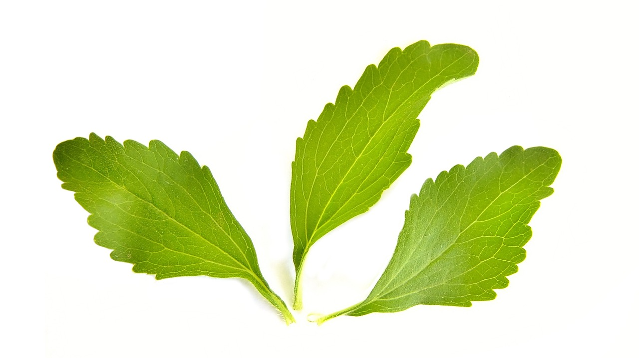 Switch to stevia: The sugar alternative for Diet.
